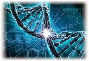 ADN+(Adina+Amironesei+blog)