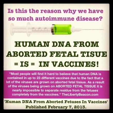 Celule+fetale+in+vaccinuri